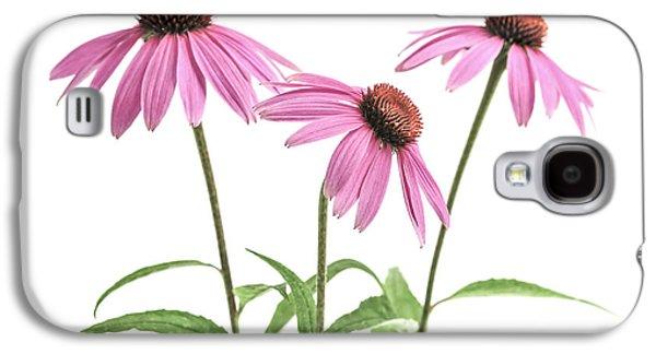 Echinacea Purpurea Flowers Galaxy S4 Case by Elena Elisseeva