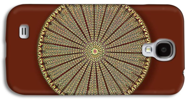 Fossil Diatom Galaxy S4 Case by Frank Fox