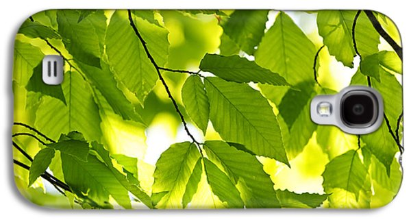 Green Galaxy S4 Cases - Green spring leaves Galaxy S4 Case by Elena Elisseeva