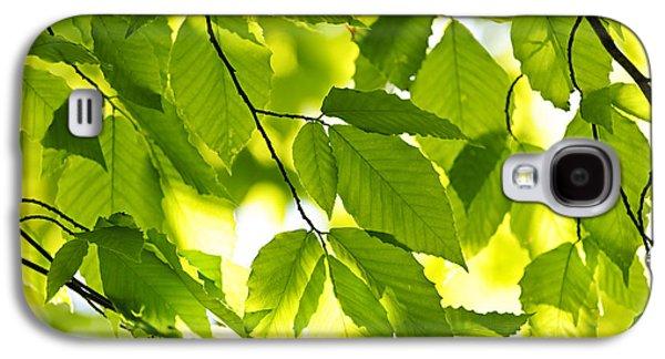 Green Spring Leaves Galaxy S4 Case by Elena Elisseeva
