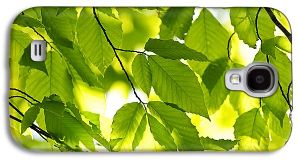 Closeup Galaxy S4 Cases - Green spring leaves Galaxy S4 Case by Elena Elisseeva