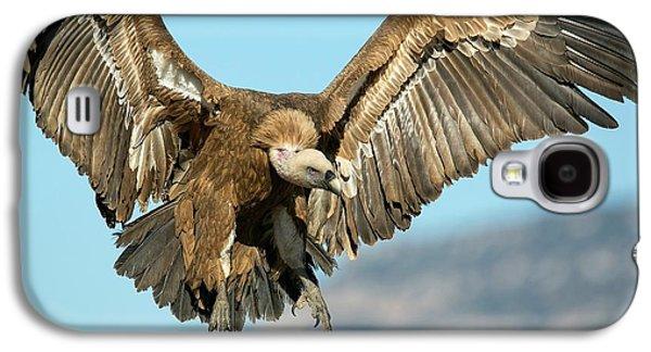 Griffon Vulture Flying Galaxy S4 Case by Nicolas Reusens