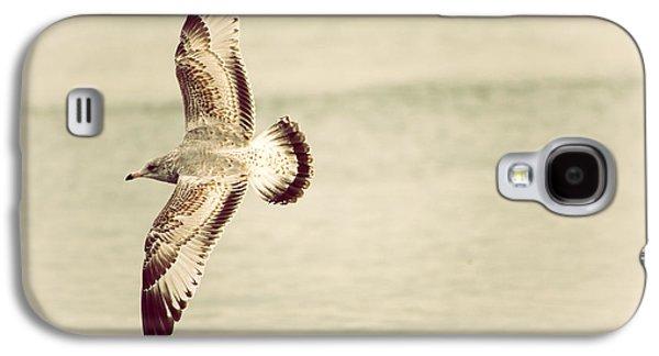 Coasting Galaxy S4 Cases - Herring Gull in Flight Galaxy S4 Case by Karol  Livote