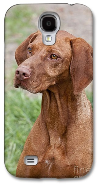 Dog Retrieving Galaxy S4 Cases - Hungarian Vizsla Galaxy S4 Case by William H. Mullins