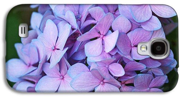 Botanical Galaxy S4 Cases - Hydrangea Galaxy S4 Case by Rona Black