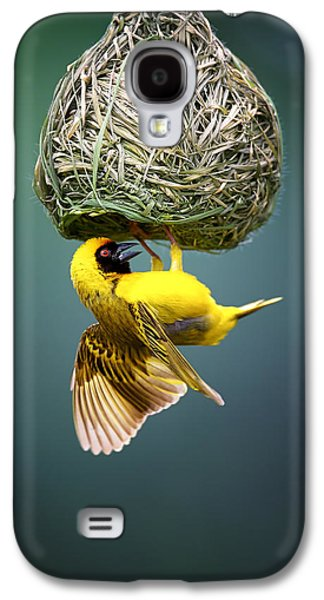 Small Photographs Galaxy S4 Cases - Masked weaver at nest Galaxy S4 Case by Johan Swanepoel