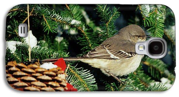 Northern Mockingbird (mimus Polyglottos Galaxy S4 Case by Richard and Susan Day