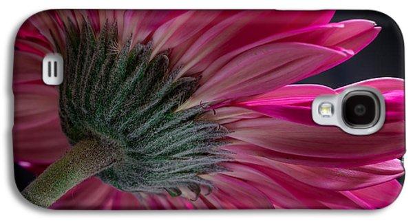 Edgar Laureano Photographs Galaxy S4 Cases - Pink flower Galaxy S4 Case by Edgar Laureano