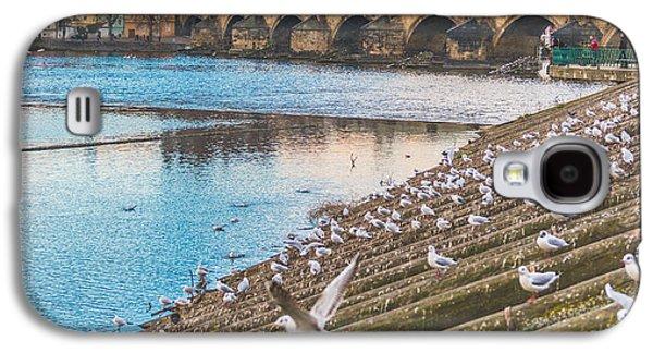 Birding Photographs Galaxy S4 Cases - Prague Galaxy S4 Case by Cory Dewald