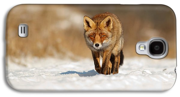 Frontal Galaxy S4 Cases - Red Fox in the Snow Galaxy S4 Case by Roeselien Raimond
