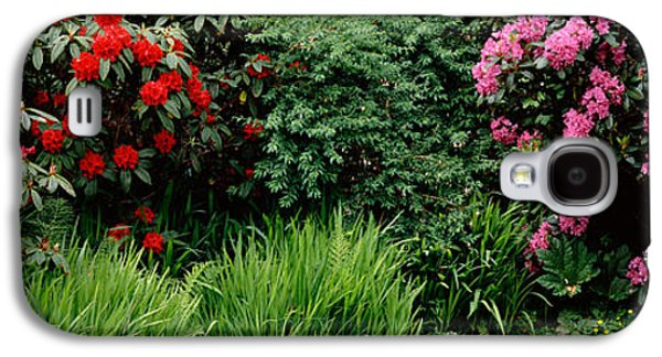 Rhododendrons Plants In A Garden, Shore Galaxy S4 Case by Panoramic Images