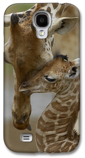 Color Image Galaxy S4 Cases - Rothschild Giraffe and Calf Galaxy S4 Case by San Diego Zoo