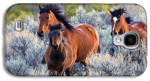Wild Horse Galaxy S4 Cases - Running Free Galaxy S4 Case by Mike Dawson