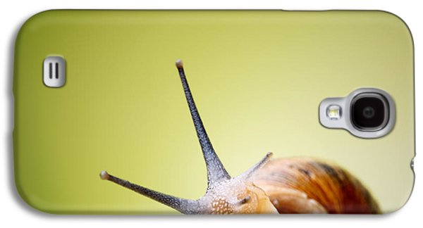Helix Galaxy S4 Cases - Snail on green stem Galaxy S4 Case by Johan Swanepoel