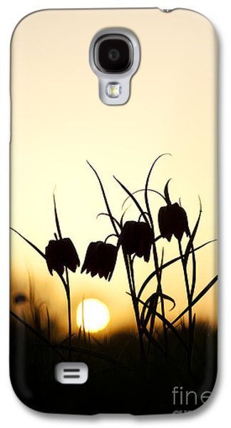 Meleagris Galaxy S4 Cases - Snakes head fritillary flowers at sunset Galaxy S4 Case by Tim Gainey