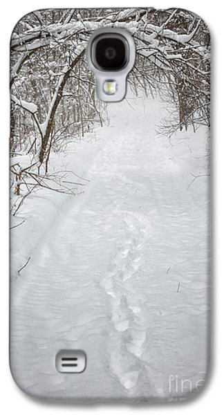 Storm Prints Photographs Galaxy S4 Cases - Snowy winter path in forest Galaxy S4 Case by Elena Elisseeva