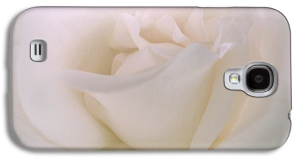 Botanical Galaxy S4 Cases - Softness of a White Rose Flower Galaxy S4 Case by Jennie Marie Schell