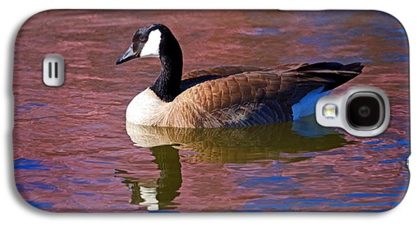Geese Digital Art Galaxy S4 Cases - That Touch of Pink Galaxy S4 Case by Donna Kennedy