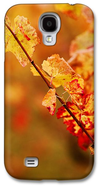 Close Focus Nature Scene Galaxy S4 Cases - Vineyard In Autumn, Gaillac, Tarn Galaxy S4 Case by Panoramic Images