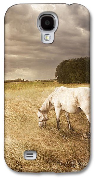 Light Pyrography Galaxy S4 Cases - White Horse Galaxy S4 Case by Jelena Jovanovic