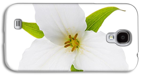 Square Format Galaxy S4 Cases - White Trillium flower  Galaxy S4 Case by Elena Elisseeva