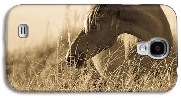 Wild Horse Galaxy S4 Cases - Wild Horse on the Beach Galaxy S4 Case by Diane Diederich