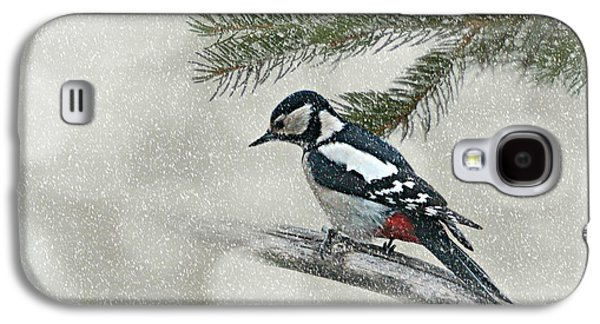 Flora Mixed Media Galaxy S4 Cases - Woodpecker Galaxy S4 Case by Heike Hultsch