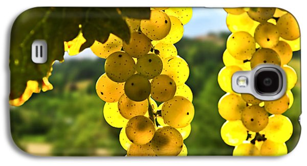 Vines Galaxy S4 Cases - Yellow grapes Galaxy S4 Case by Elena Elisseeva