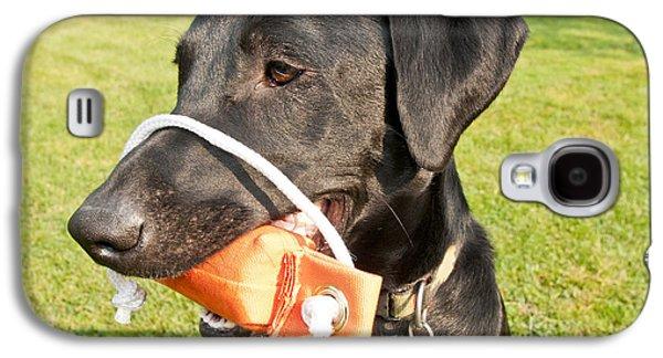 Dog Retrieving Galaxy S4 Cases - Black Labrador Retriever Galaxy S4 Case by William H. Mullins