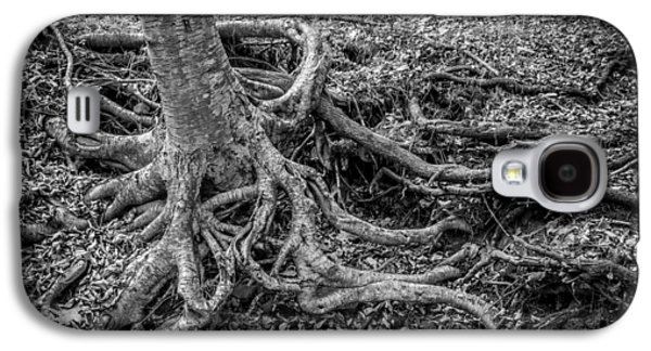 Tree Roots Galaxy S4 Cases - Waterfalls George W Childs National Park Painted BW   Galaxy S4 Case by Rich Franco