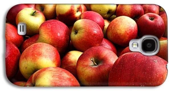 Local Food Galaxy S4 Cases - Apples Galaxy S4 Case by Olivier Le Queinec