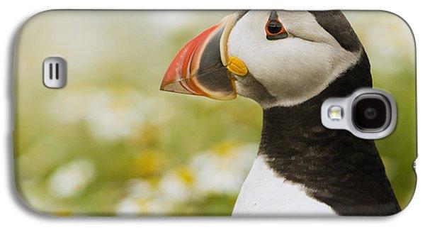 Atlantic Puffin In Breeding Plumage Galaxy S4 Case by Sebastian Kennerknecht