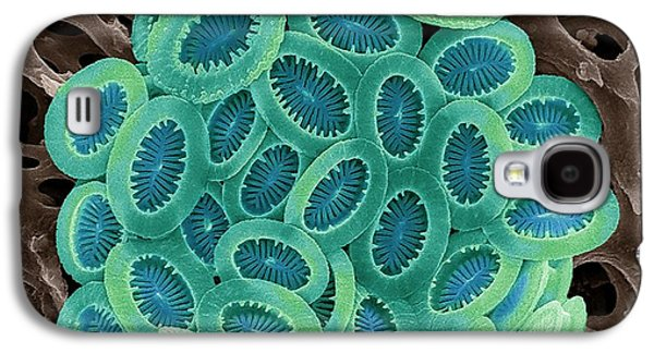 Coccolithophore Galaxy S4 Case by Steve Gschmeissner