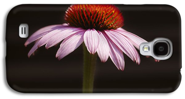 Genus Galaxy S4 Cases - Cornflower Galaxy S4 Case by Tony Cordoza