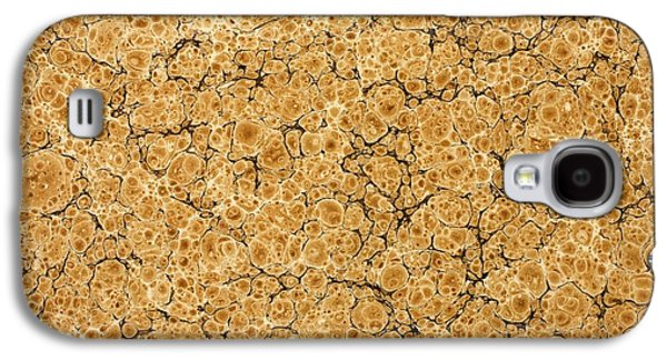 Print Tapestries - Textiles Galaxy S4 Cases - Decorative end paper Galaxy S4 Case by English School
