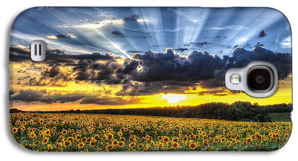 Sunflower Fields Galaxy S4 Cases - Field of View Galaxy S4 Case by Chris Austin