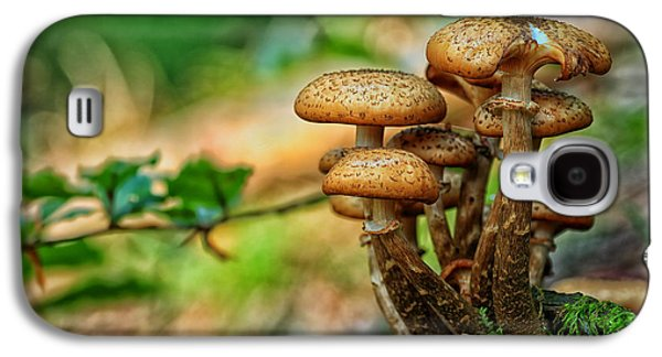 Ground Level Galaxy S4 Cases - Forest Mushrooms Galaxy S4 Case by Mountain Dreams