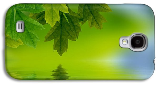 Background Photographs Galaxy S4 Cases - Leaves reflecting in water Galaxy S4 Case by Aged Pixel