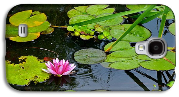 Lilly Pad Galaxy S4 Cases - Lilly Pads Galaxy S4 Case by Frozen in Time Fine Art Photography