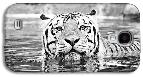 The Tiger Galaxy S4 Cases - Mike Galaxy S4 Case by Scott Pellegrin