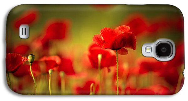 Botanical Galaxy S4 Cases - Poppy Dream Galaxy S4 Case by Nailia Schwarz