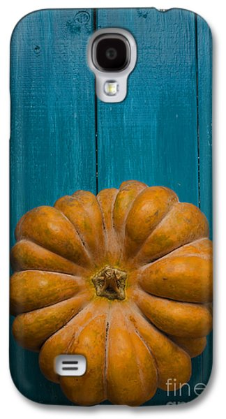 Greeting Cards Pyrography Galaxy S4 Cases - Pumpkin Galaxy S4 Case by Jelena Jovanovic
