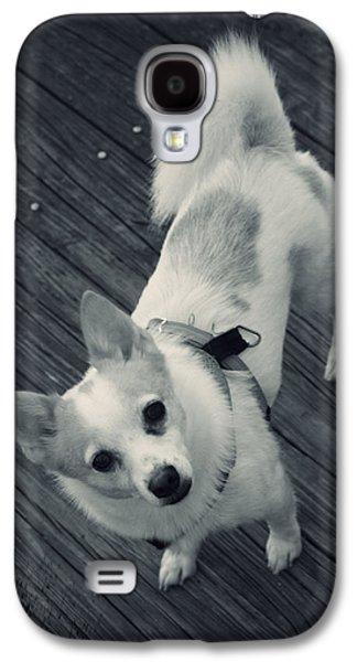Animal Lover Digital Art Galaxy S4 Cases - Rocko Galaxy S4 Case by Mandy Shupp