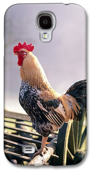 Barn Yard Galaxy S4 Cases - Rooster Galaxy S4 Case by Hans Reinhard