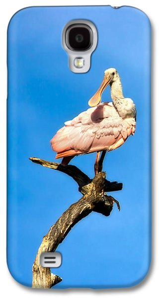 Roseate Spoonbill Galaxy S4 Case by Mark Andrew Thomas