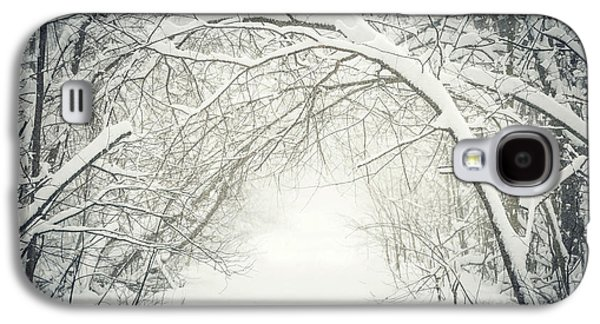 Overhang Photographs Galaxy S4 Cases - Snowy winter path in forest Galaxy S4 Case by Elena Elisseeva