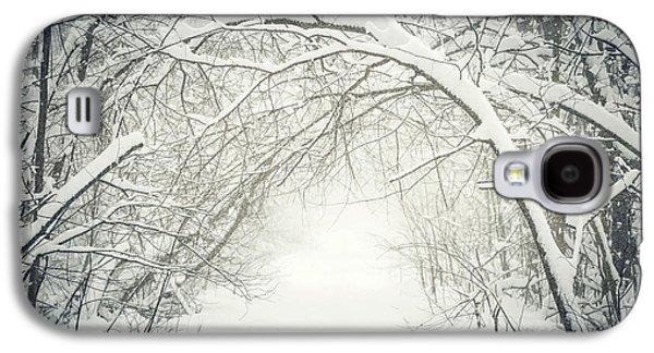 Snowy Winter Path In Forest Galaxy S4 Case by Elena Elisseeva