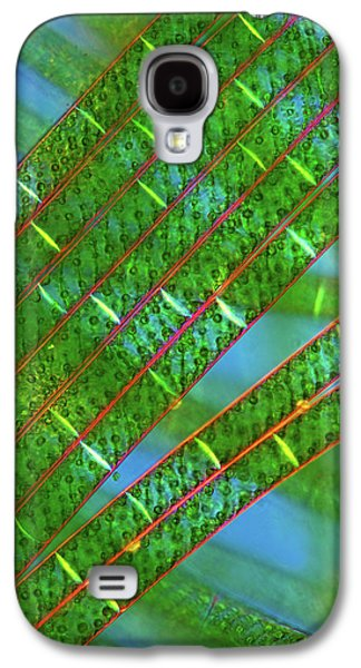 Spirogyra Algae Galaxy S4 Case by Marek Mis