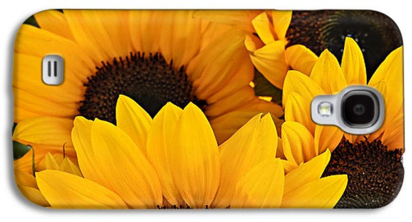 Square Format Galaxy S4 Cases - Sunflowers Galaxy S4 Case by Elena Elisseeva