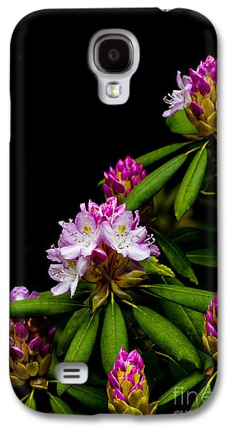 Rhododendron Galaxy S4 Cases - West Virginia State Flower Galaxy S4 Case by Thomas R Fletcher
